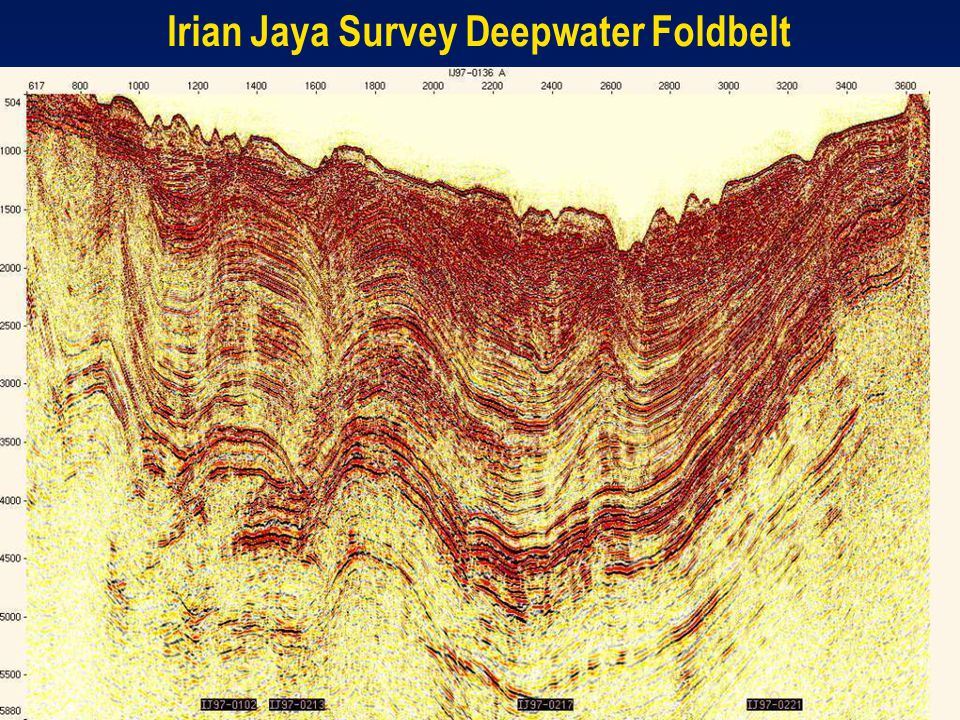 Irian Jaya Survey Deepwater Foldbelt