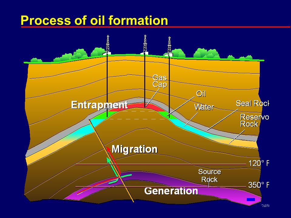Process of oil formation Source Rock