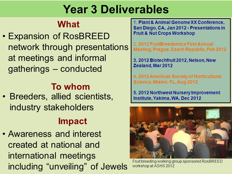 What To whom Year 3 Deliverables Impact Expansion of RosBREED network through presentations at meetings and informal gatherings – conducted Breeders, allied scientists, industry stakeholders Awareness and interest created at national and international meetings including unveiling of Jewels Fruit breeding working group sponsored RosBREED workshop at ASHS 2012 1.
