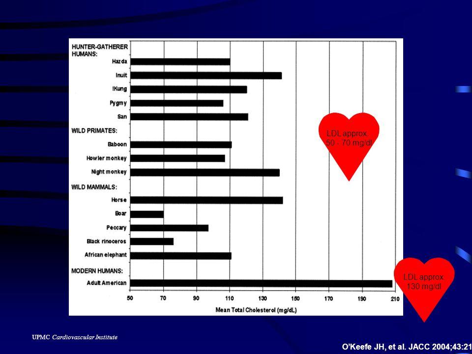 UPMC Cardiovascular Institute 47