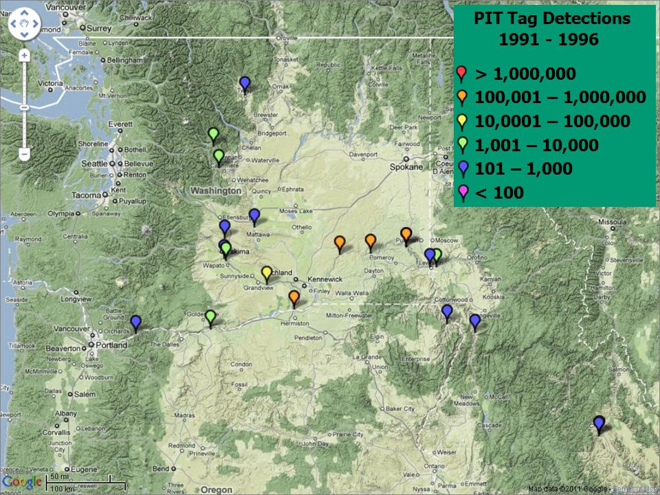 PIT Tag Detections 1991 - 1996 > 1,000,000 100,001 – 1,000,000 10,0001 – 100,000 1,001 – 10,000 101 – 1,000 < 100
