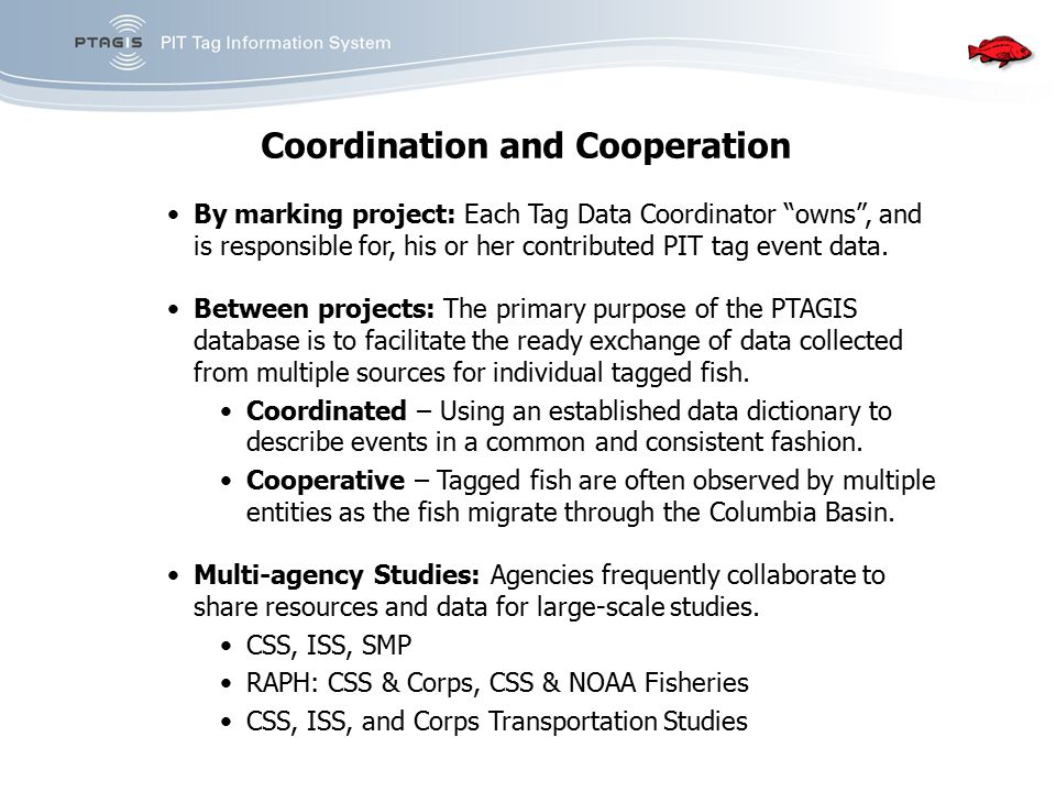 """Coordination and Cooperation By marking project: Each Tag Data Coordinator """"owns"""", and is responsible for, his or her contributed PIT tag event data."""