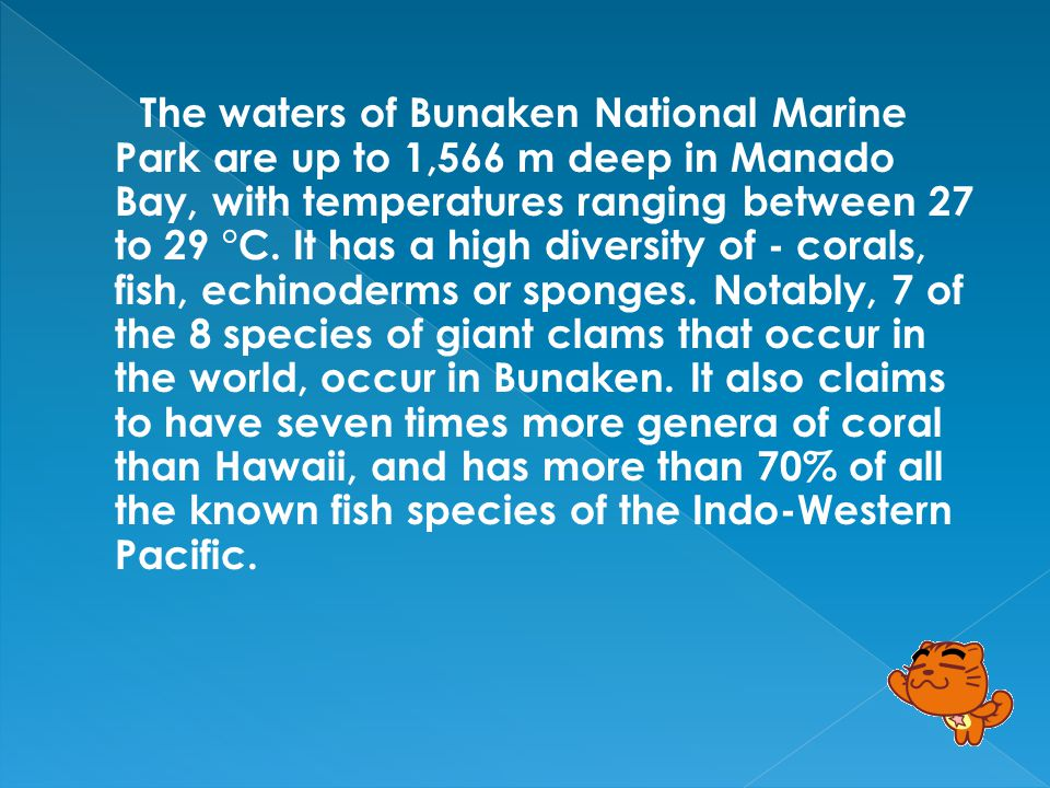 Bunaken is an island of 8 km², part of the Bunaken National Marine Park.