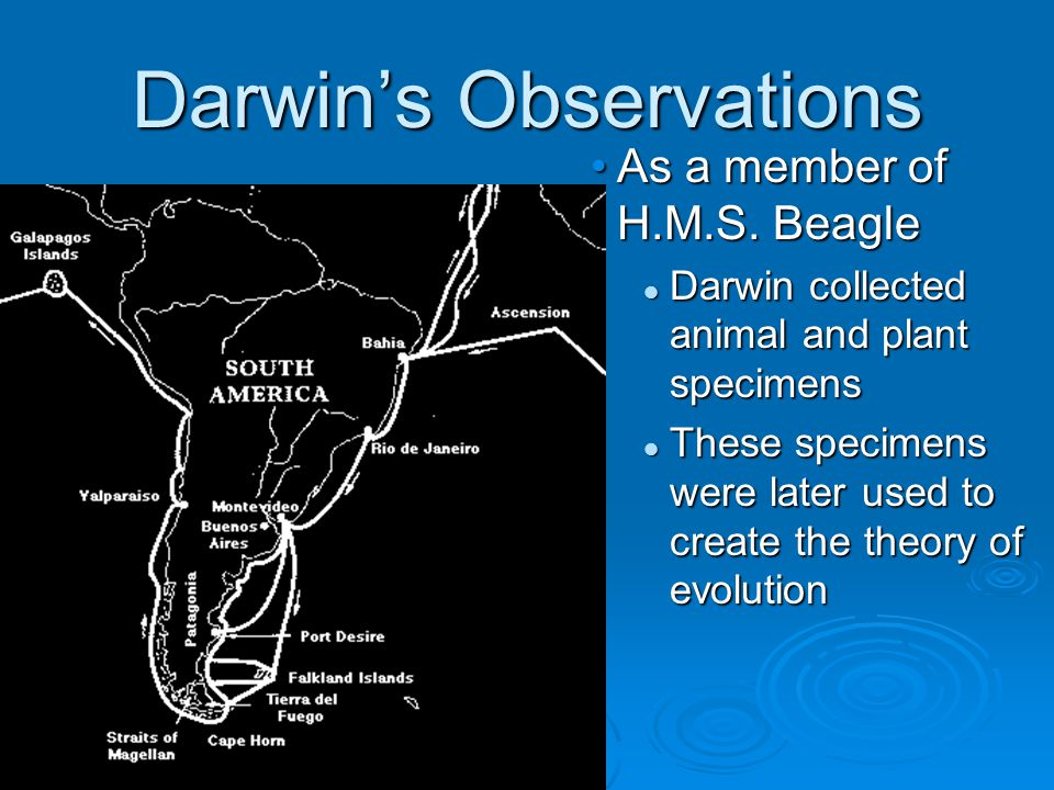 Darwin's Observations As a member of H.M.S.