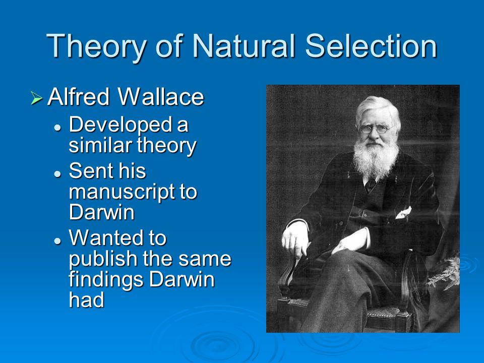 Theory of Natural Selection  Alfred Wallace Developed a similar theory Developed a similar theory Sent his manuscript to Darwin Sent his manuscript to Darwin Wanted to publish the same findings Darwin had Wanted to publish the same findings Darwin had