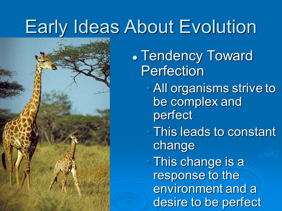 Early Ideas About Evolution Tendency Toward Perfection All organisms strive to be complex and perfect This leads to constant change This change is a r