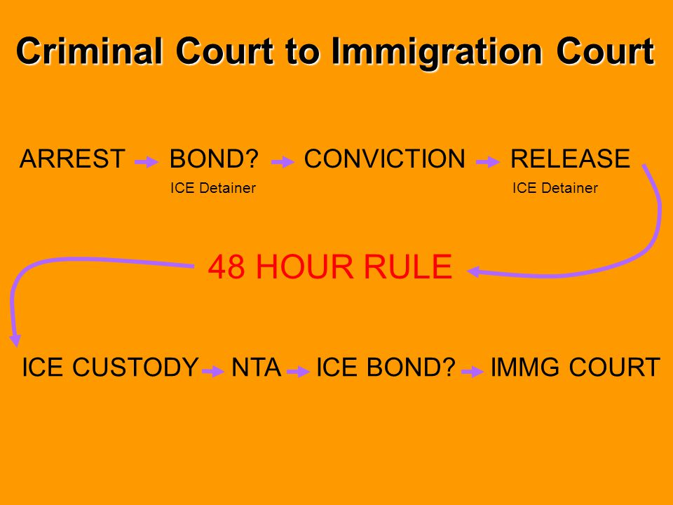 "Realities of Immigration Advisements in Indigent Defense Systems Case volume Limited funding Specialized knowledge More ""serious"" issues to worry abou"