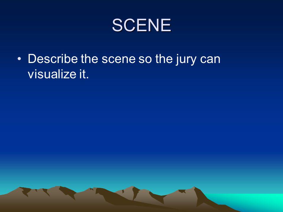 SCENE Describe the scene so the jury can visualize it.