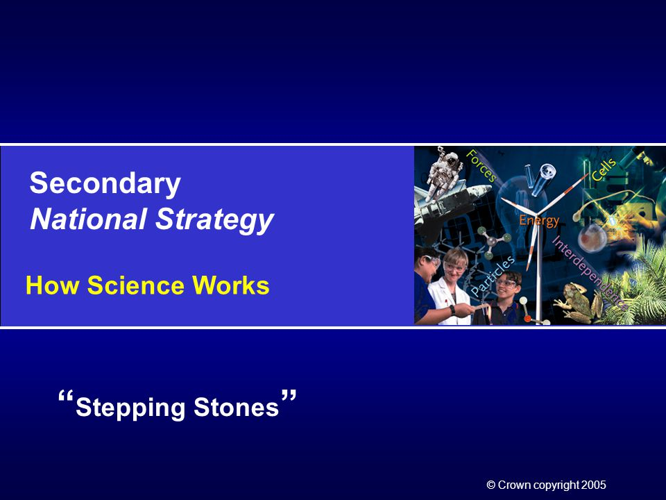 Secondary National Strategy © Crown copyright 2005 Stepping Stones How Science Works