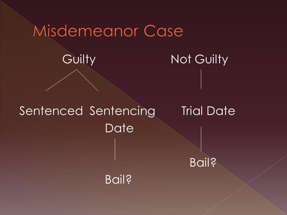 Guilty Not Guilty Sentenced Sentencing Trial Date Date Bail