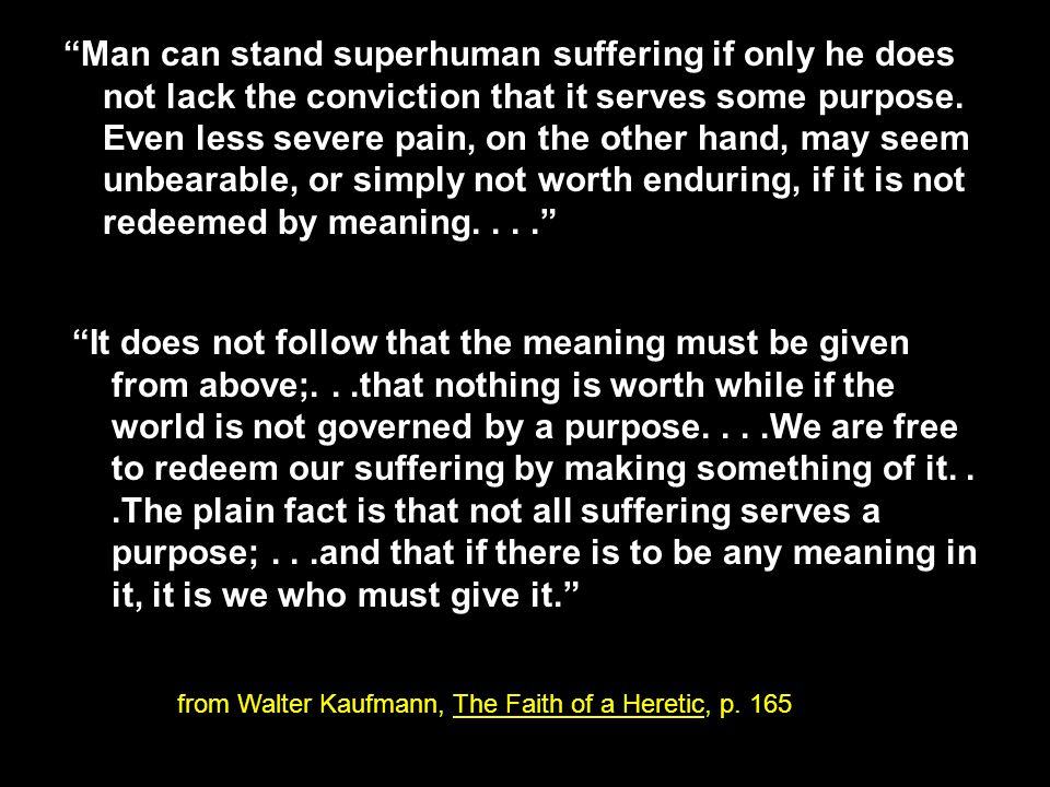 Man can stand superhuman suffering if only he does not lack the conviction that it serves some purpose.