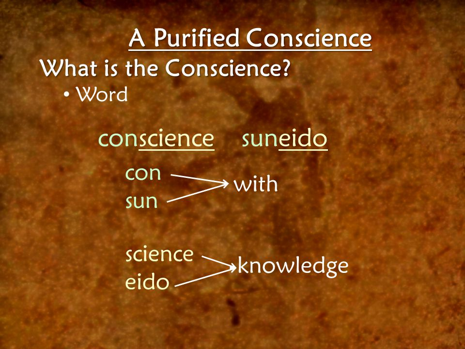 A Purified Conscience What is the Conscience? Word consciencesuneido con sun science eido with knowledge