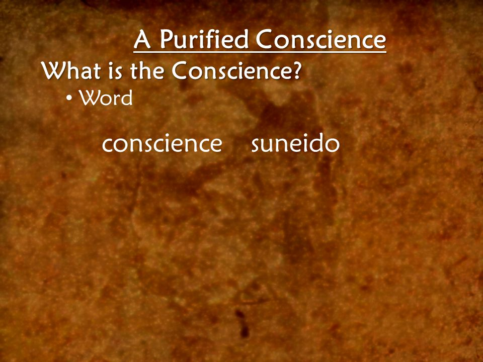 A Purified Conscience What is the Conscience? Word consciencesuneido