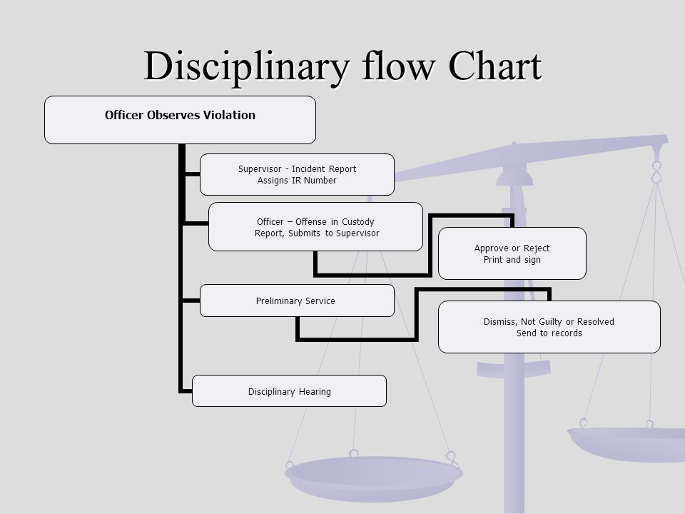 Disciplinary flow Chart Officer Observes Violation Supervisor - Incident Report Assigns IR Number Officer – Offense in Custody Report, Submits to Supervisor Approve or Reject Print and sign Preliminary Service Dismiss, Not Guilty or Resolved Send to records Disciplinary Hearing