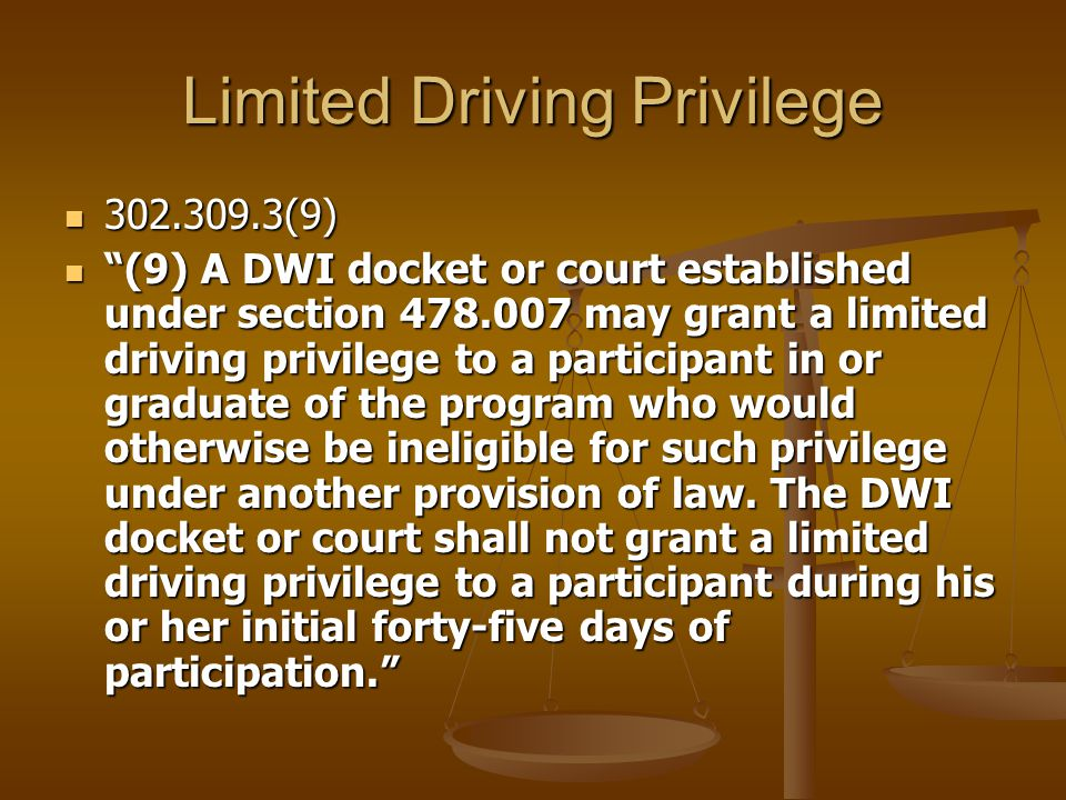 Limited Driving Privilege 302.309.3(9) 302.309.3(9) (9) A DWI docket or court established under section 478.007 may grant a limited driving privilege to a participant in or graduate of the program who would otherwise be ineligible for such privilege under another provision of law.