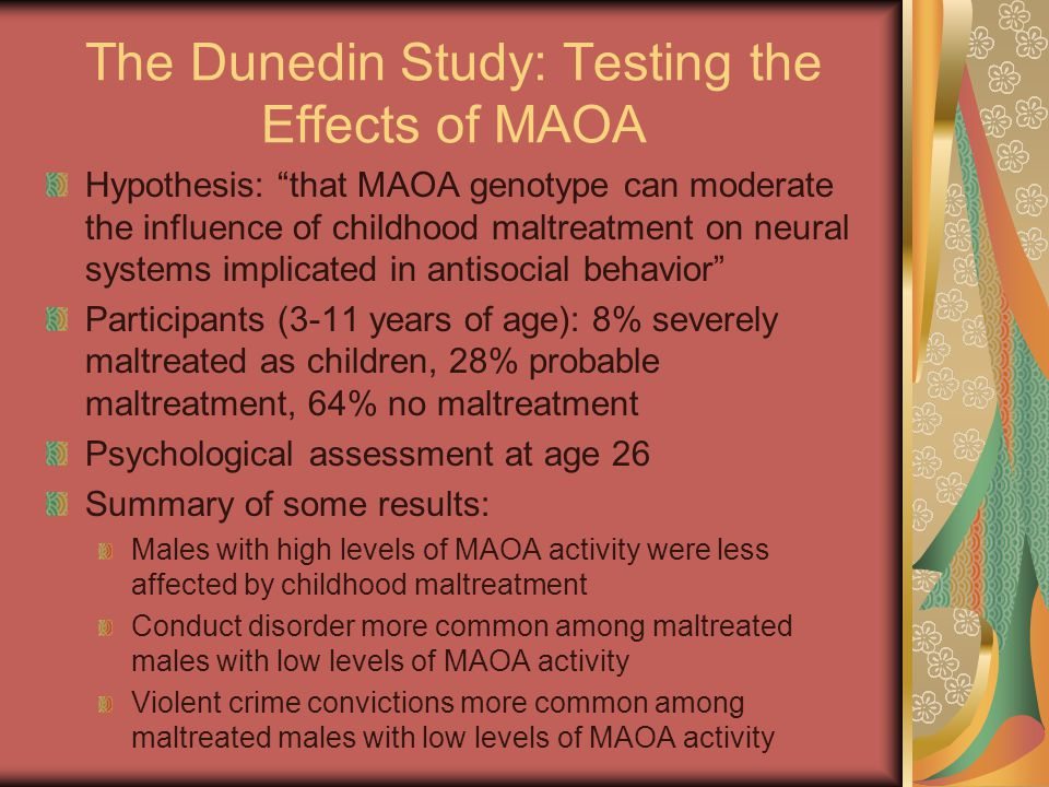 The Dunedin Study: Testing the Effects of MAOA Hypothesis: that MAOA genotype can moderate the influence of childhood maltreatment on neural systems implicated in antisocial behavior Participants (3-11 years of age): 8% severely maltreated as children, 28% probable maltreatment, 64% no maltreatment Psychological assessment at age 26 Summary of some results: Males with high levels of MAOA activity were less affected by childhood maltreatment Conduct disorder more common among maltreated males with low levels of MAOA activity Violent crime convictions more common among maltreated males with low levels of MAOA activity