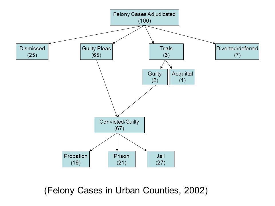 Felony Cases Adjudicated (100) Dismissed (25) Guilty Pleas (65) Trials (3) Diverted/deferred (7) Guilty (2) Acquittal (1) Convicted/Guilty (67) Probation (19) Prison (21) Jail (27) (Felony Cases in Urban Counties, 2002)
