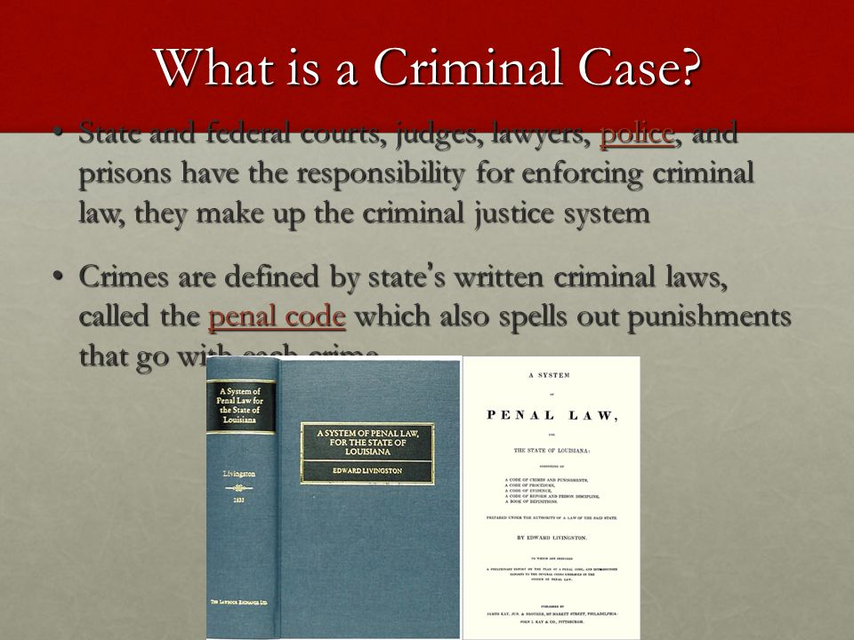 What is a Criminal Case.
