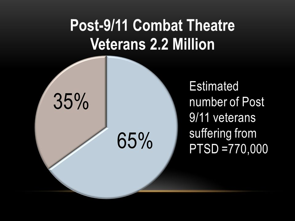 Defendant pleads guilty or is found guilty Probation eligible/assigned and appropriate treatment is available Treatment can be VA, Vet Center, or other local mental health resources, preference given to programs treating veteran's particular assessed condition(s).