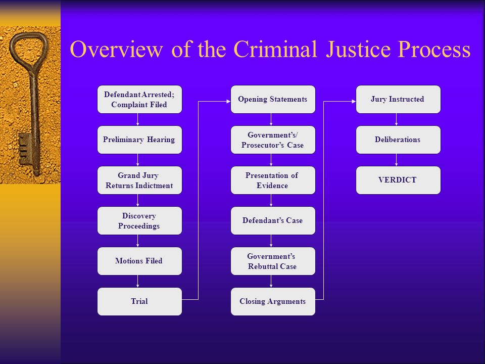 Overview of the Criminal Justice Process  The Procedure After Trial –Sentencing –Appeal –Habeas Corpus