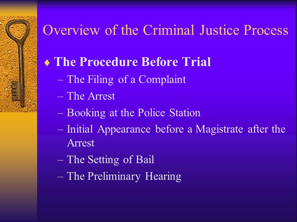 Overview of the Criminal Justice Process  The Procedure Before Trial –The Filing of a Complaint –The Arrest –Booking at the Police Station –Initial A