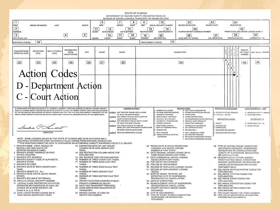 Action Codes D - Department Action C - Court Action