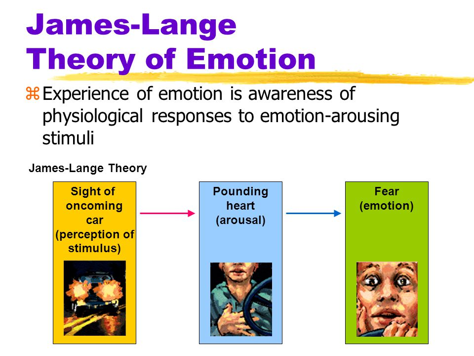 Theories of Emotion zDoes your heart pound because you are afraid...