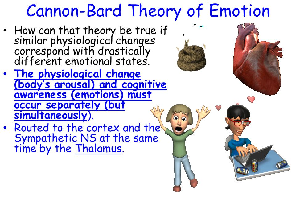 Cannon-Bard Theory of Emotion How can that theory be true if similar physiological changes correspond with drastically different emotional states. The