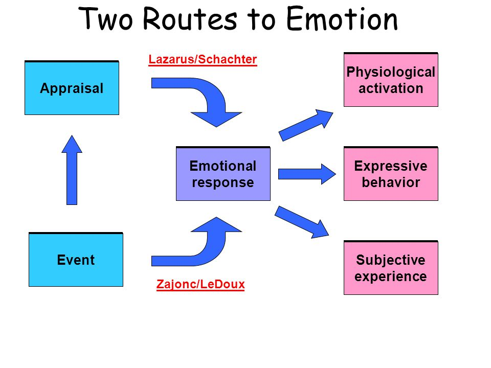 Appraisal Event Emotional response Physiological activation Expressive behavior Subjective experience Lazarus/Schachter Zajonc/LeDoux Two Routes to Em