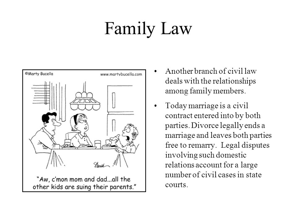 Family Law Another branch of civil law deals with the relationships among family members. Today marriage is a civil contract entered into by both part