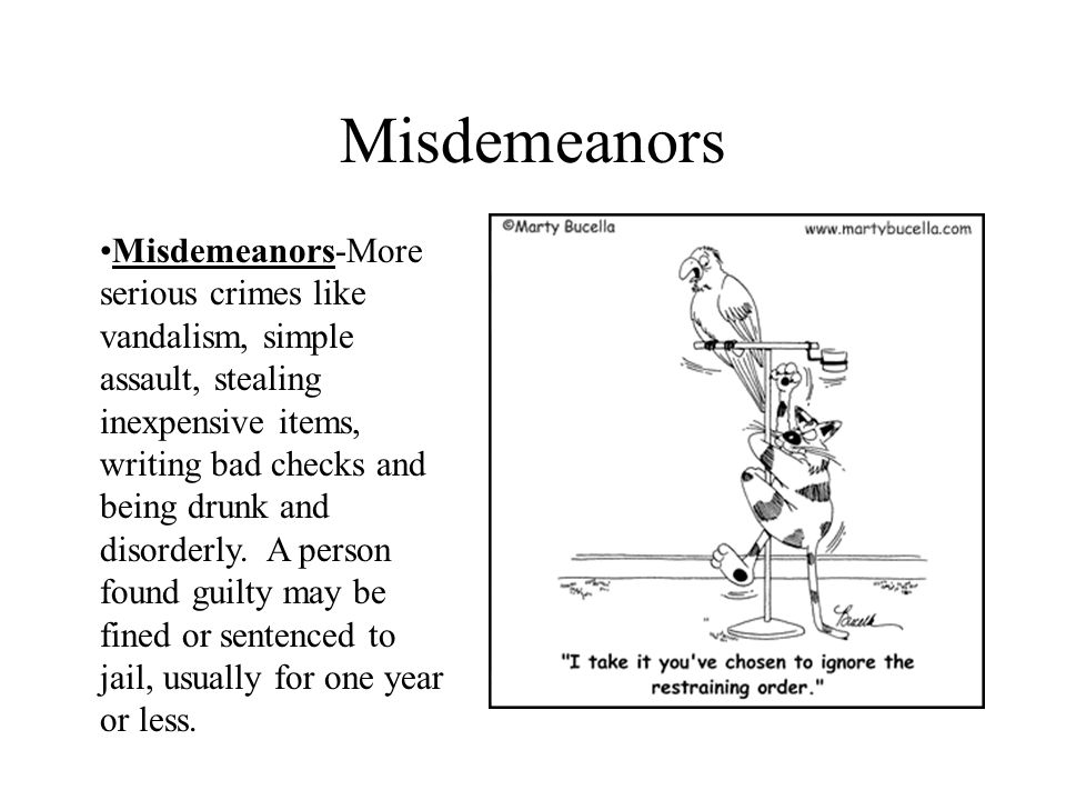 Misdemeanors Misdemeanors-More serious crimes like vandalism, simple assault, stealing inexpensive items, writing bad checks and being drunk and disor
