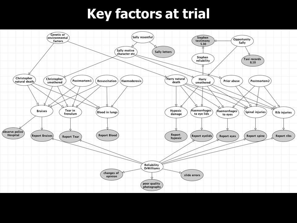 Key factors at trial