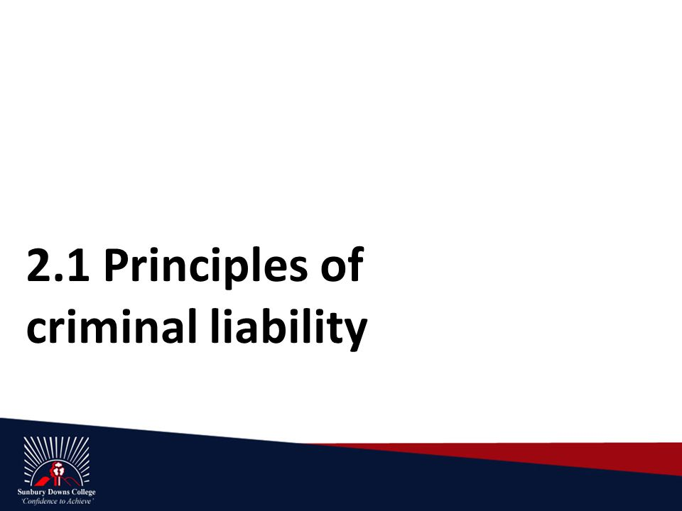 2.1 Principles of criminal liability