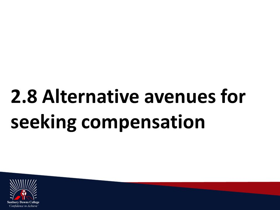 2.8 Alternative avenues for seeking compensation