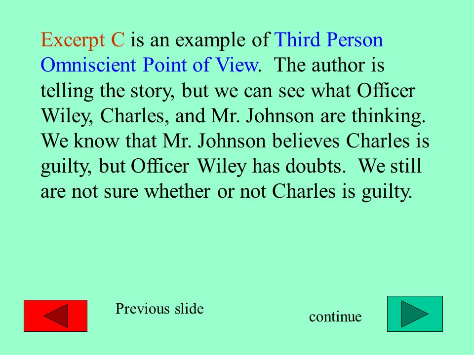 Excerpt C is an example of Third Person Omniscient Point of View.