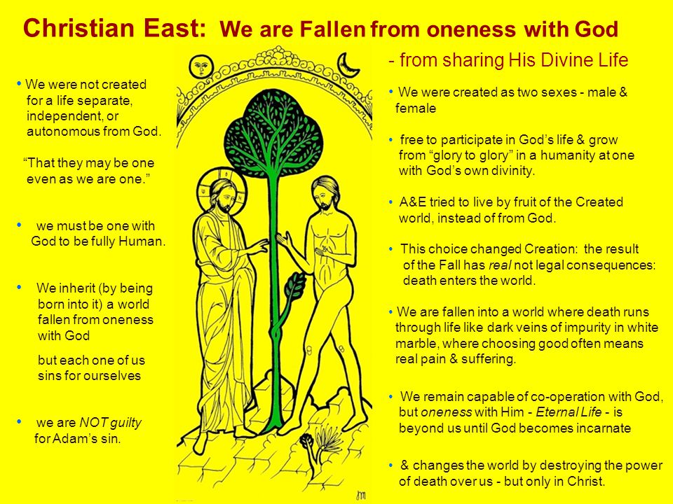 """Christian East: We are Fallen from oneness with God We were not created for a life separate, independent, or autonomous from God. """"That they may be on"""