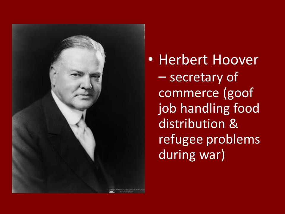 Herbert Hoover – secretary of commerce (goof job handling food distribution & refugee problems during war)