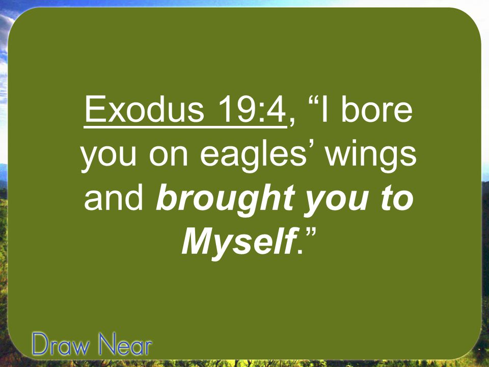"""Exodus 19:4, """"I bore you on eagles' wings and brought you to Myself."""""""