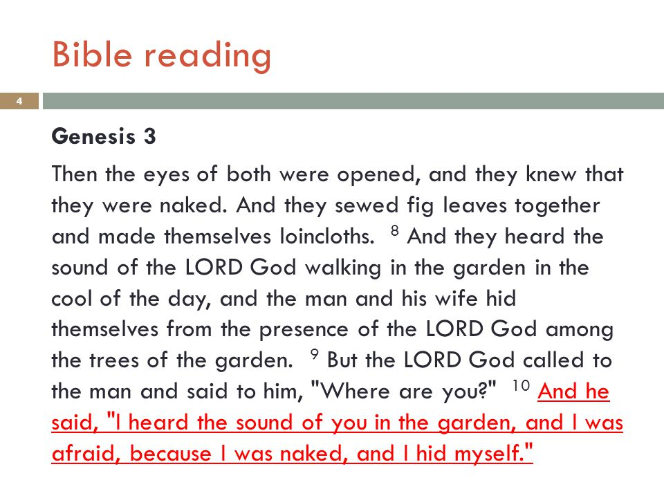 Bible reading 3 Genesis 3 4 But the serpent said to the woman,