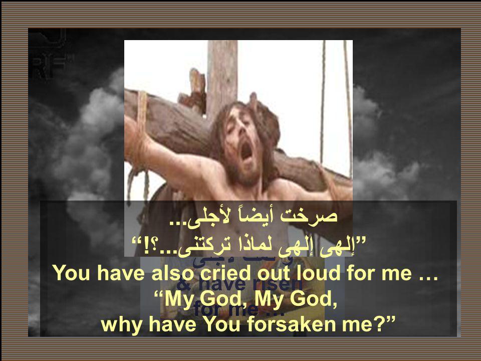 صرخ يسوع بصوت عظيم قائلا ايلي ايلي لما شبقتني اي الهي الهي لماذا تركتني. (مت 27 : 46) Jesus cried out with a loud voice,saying,