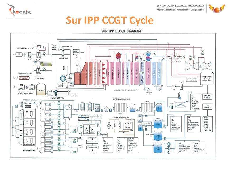 Sur IPP CCGT Cycle