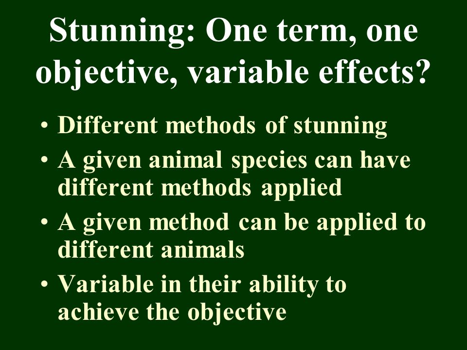 Stunning: One term, one objective, variable effects? Different methods of stunning A given animal species can have different methods applied A given m
