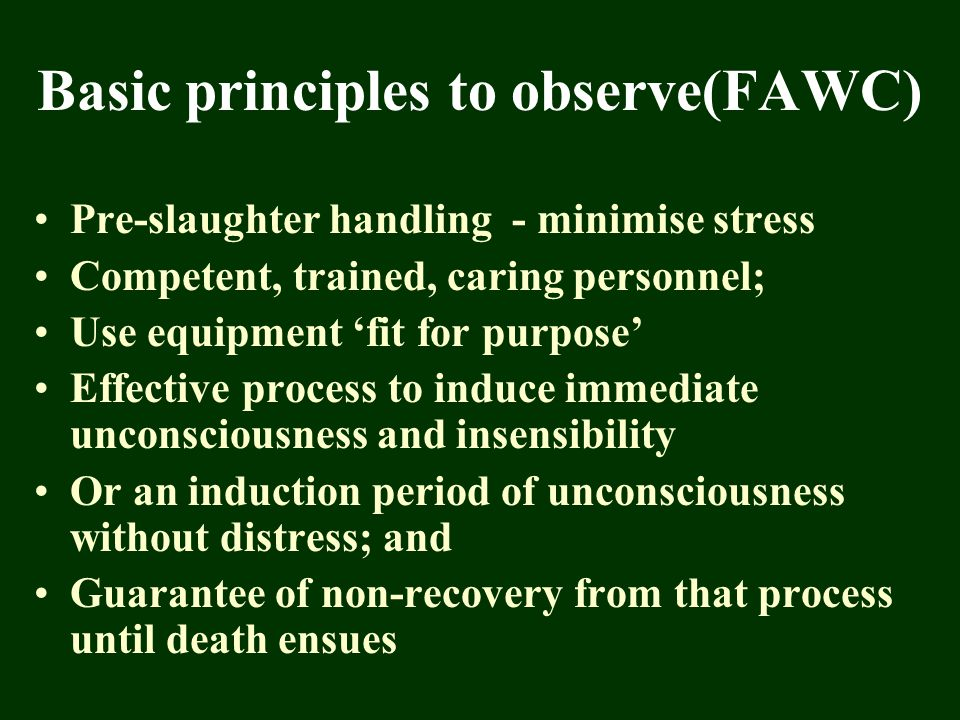 Basic principles to observe(FAWC) Pre-slaughter handling - minimise stress Competent, trained, caring personnel; Use equipment 'fit for purpose' Effec