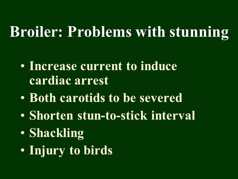 Broiler: Problems with stunning Increase current to induce cardiac arrest Both carotids to be severed Shorten stun-to-stick interval Shackling Injury
