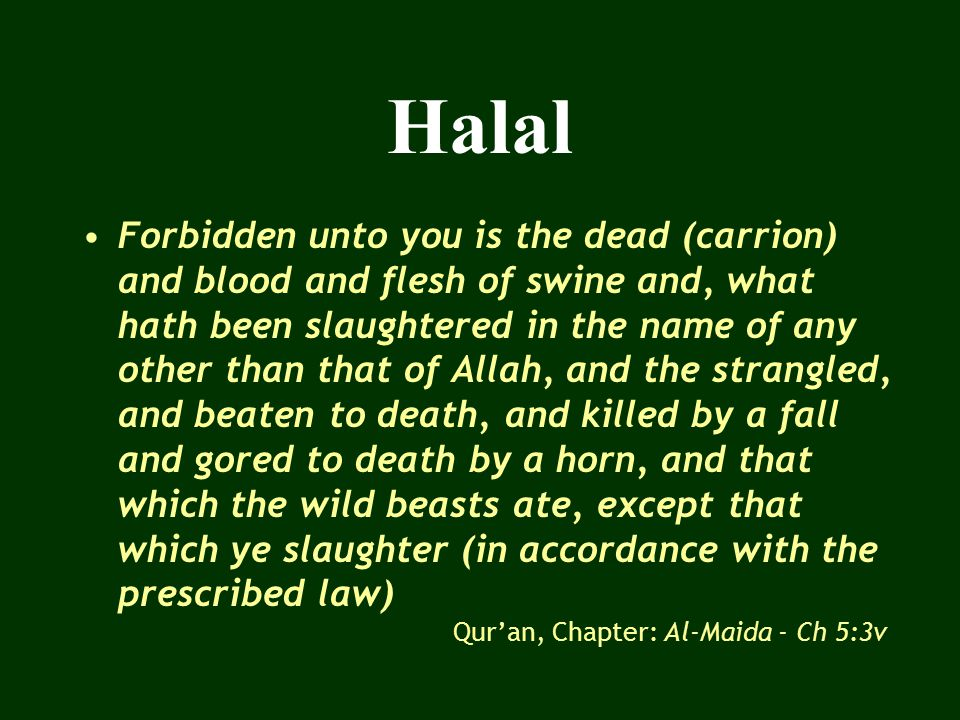 Dhabah Animal or bird must be the one that is permitted Alive, healthy and conscious at the time of slaughter Clean and hygienic (Tayyab, wholesome) Slaughterman – Muslim, trained / licensed Knife should be clean and sharp Allah's name must be invoked (Bismillahi Allahu Akber) at the time of slaughter Neck arteries, veins, windpipe should be severed by a rapid stroke Blood should be allowed to flow freely