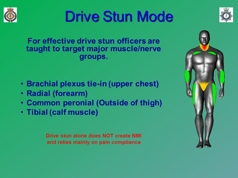 Drive Stun Mode For effective drive stun officers are taught to target major muscle/nerve groups.