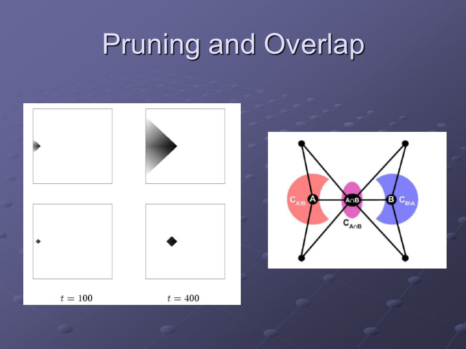 Pruning and Overlap