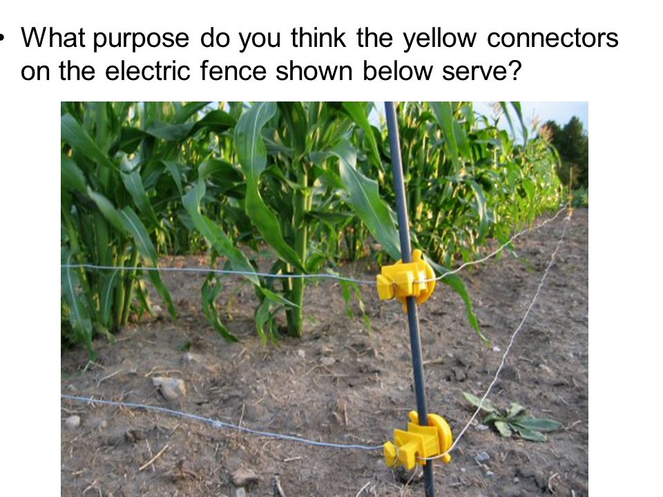 What purpose do you think the yellow connectors on the electric fence shown below serve?