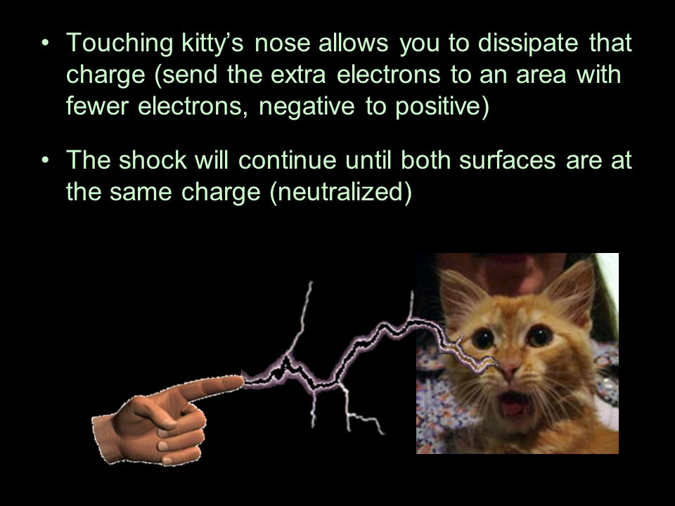 Touching kitty's nose allows you to dissipate that charge (send the extra electrons to an area with fewer electrons, negative to positive) The shock w