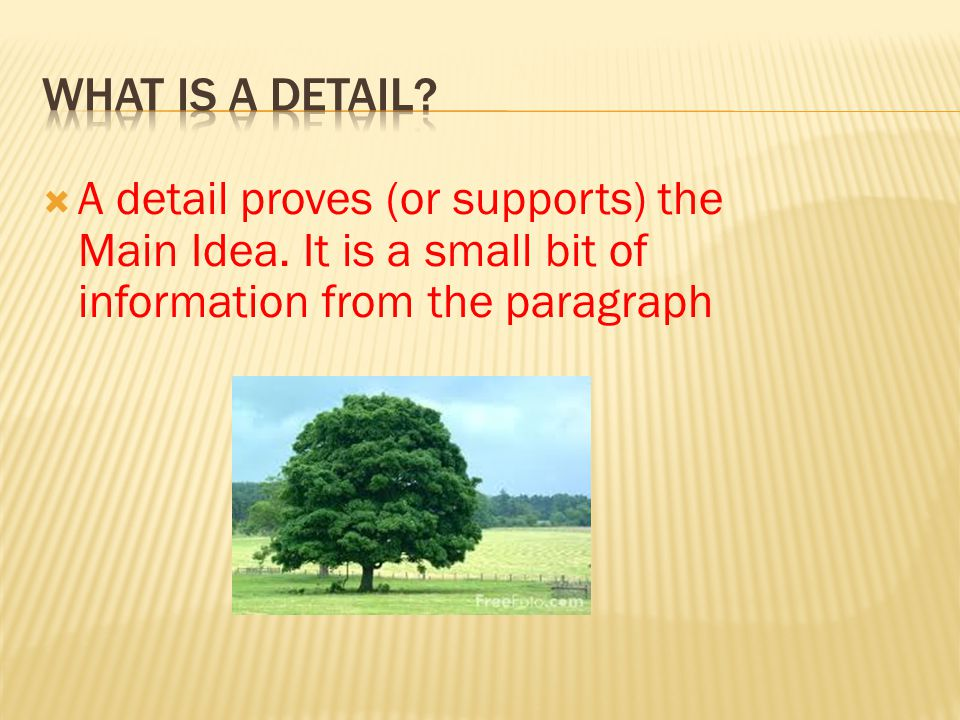  A detail proves (or supports) the Main Idea. It is a small bit of information from the paragraph